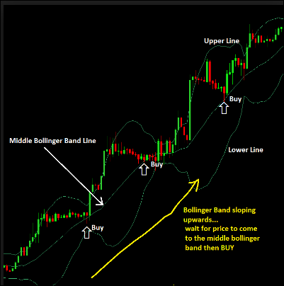 Multiplier indicator forex